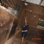 Cleaning stalls at Hands & Hearts for Horses