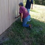 Painting sheds at Dancing Cloud Farm Horse Rescue